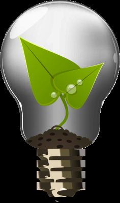Light globe - Clean Energy solutions. Solar Installer.